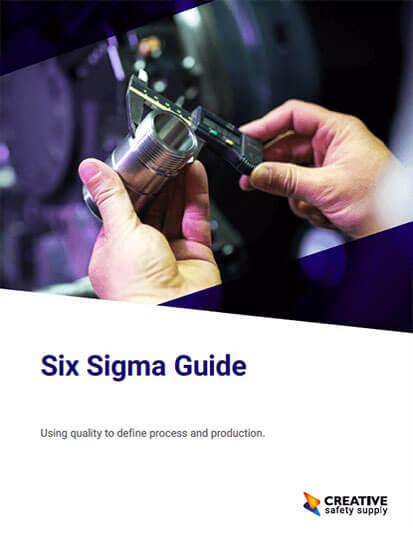 Six Sigma Guide