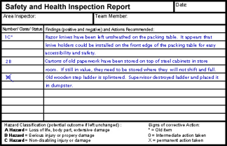 Safety Health Inspection Report